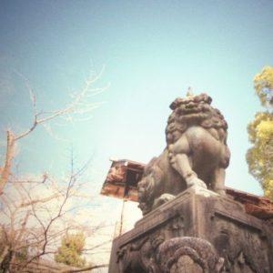 デジタルカメラで撮影 岐阜の写真教室