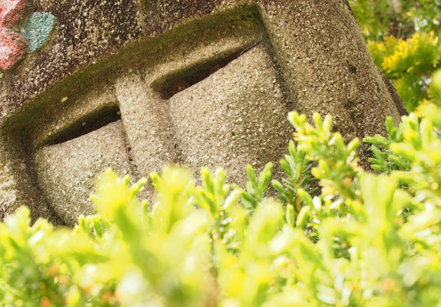 OLYMPUS Penliteで撮影 花フェスタ記念公園 単焦点レンズ