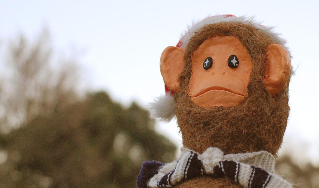 デジタル一眼レフで猿写真 冬山