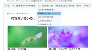 コンテンツに「花写真いろいろ」を追加しました。