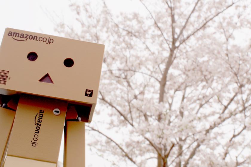 OLYMPUS DIGITAL CAMERA ダンボー ミラーレス一眼 単焦点レンズで撮影
