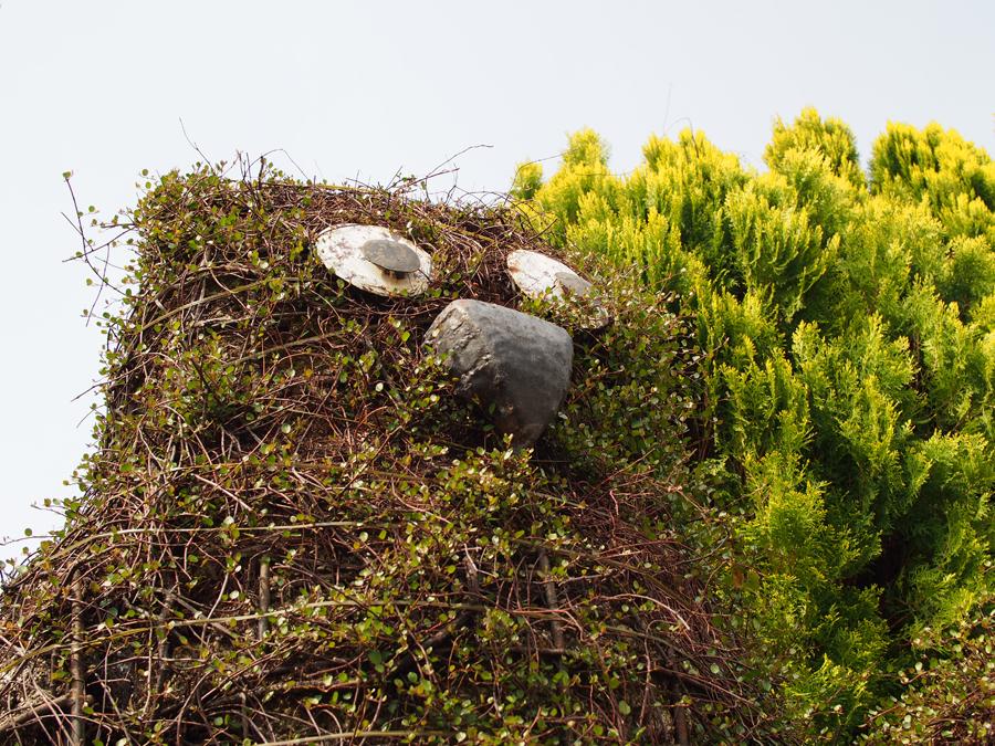 花フェスタ記念公園で撮影 OLYMPUSミラーレス一眼Penliteに単焦点レンズを使用