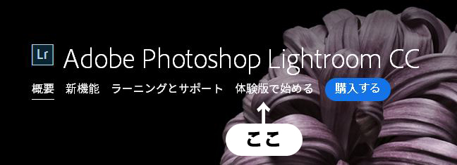 Lightroomの体験版を使ってみよう 解説画像