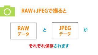 撮影データの保存形式「RAW+JPEG」って何?どんなメリットがある?