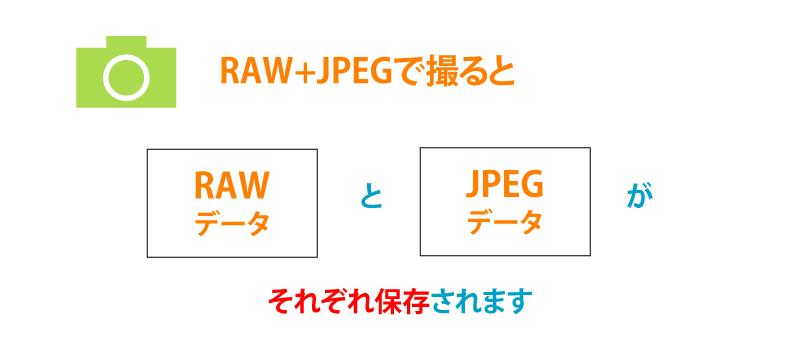 撮影データの保存形式「RAW+JPEG」解説画像