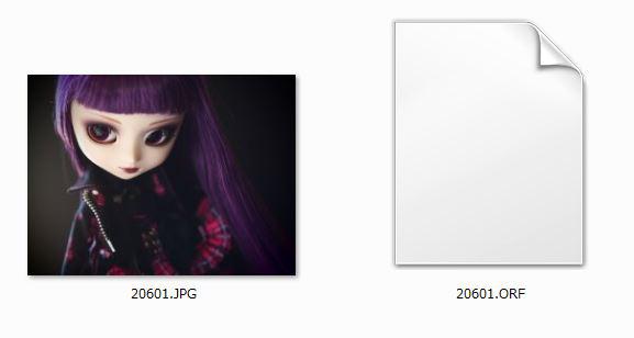RAW+JPEGについて知ってみよう データ保存のサンプル画像