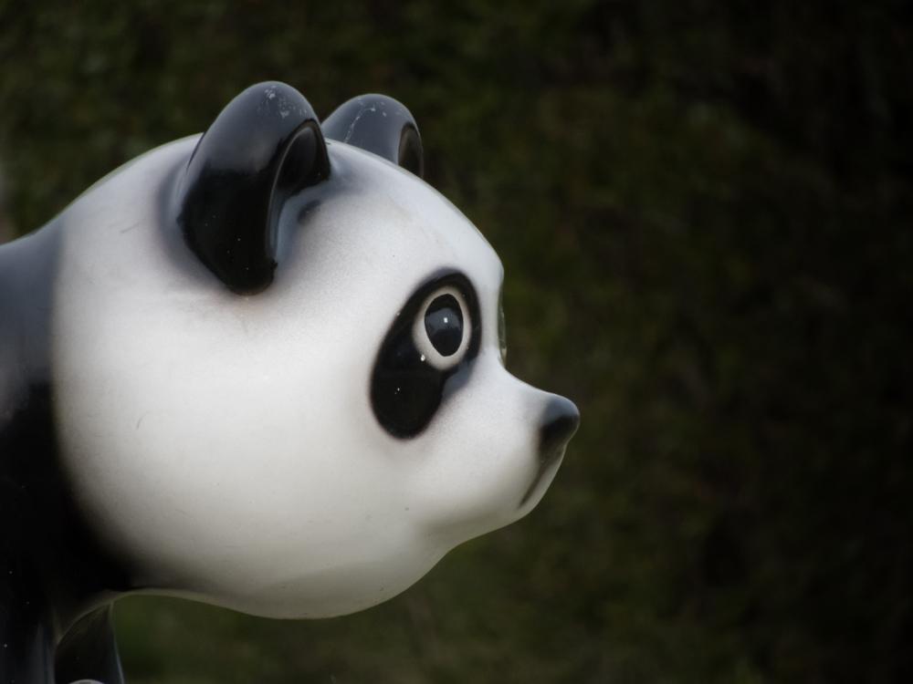 微妙な顔をした遊具 パンダ