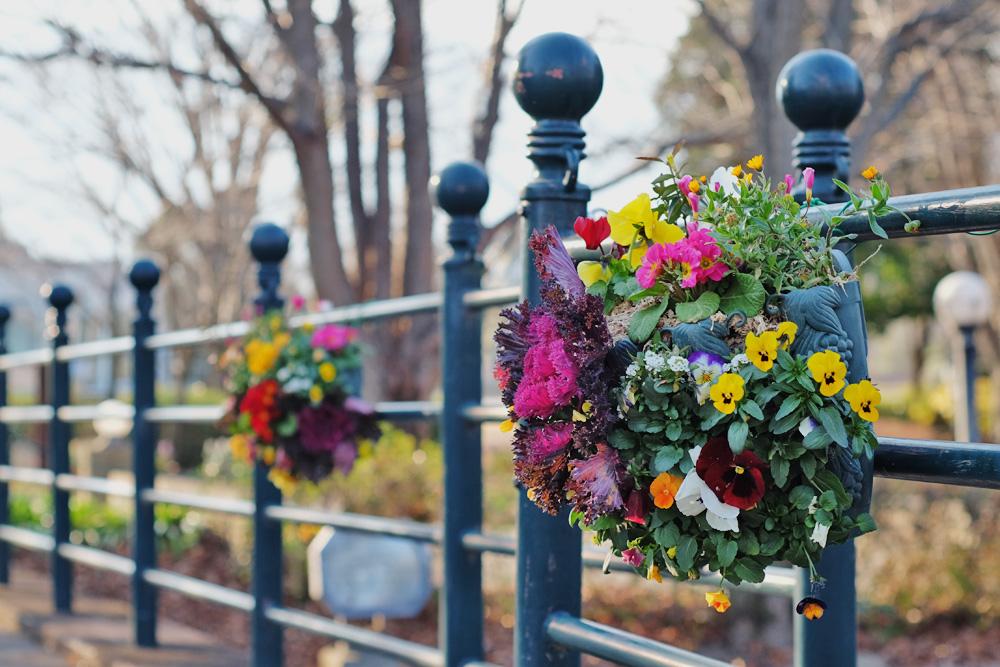 アクアワールド水郷パークセンター 飾られている花