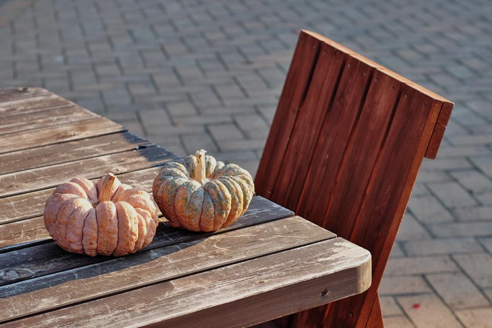 アクアワールド水郷パークセンター テーブルとベンチ