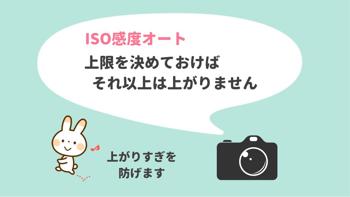 カメラのISO感度はオート&上限設定がおすすめ