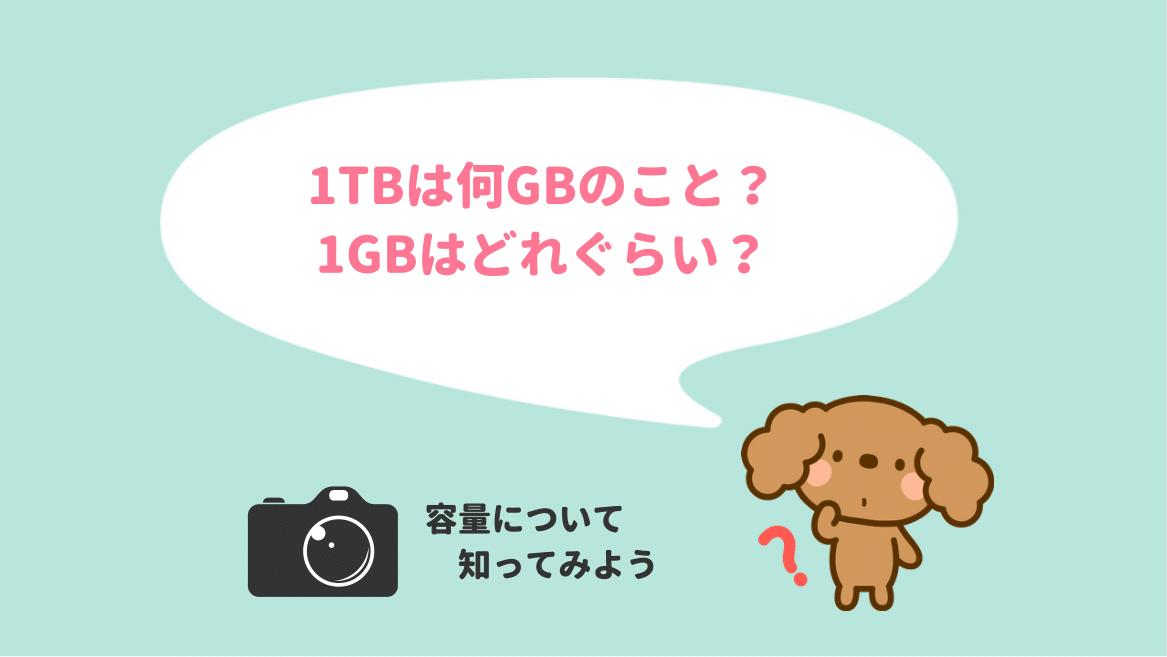 1TBは何GB?1GBは何MB