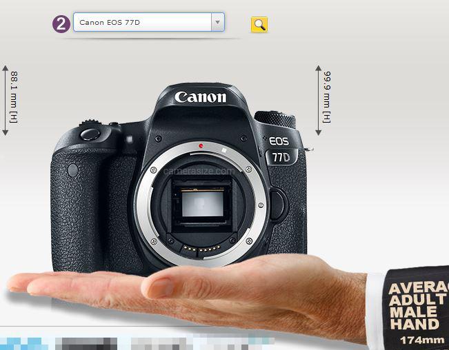 「CameraSize.com」手に乗せた状態を表示