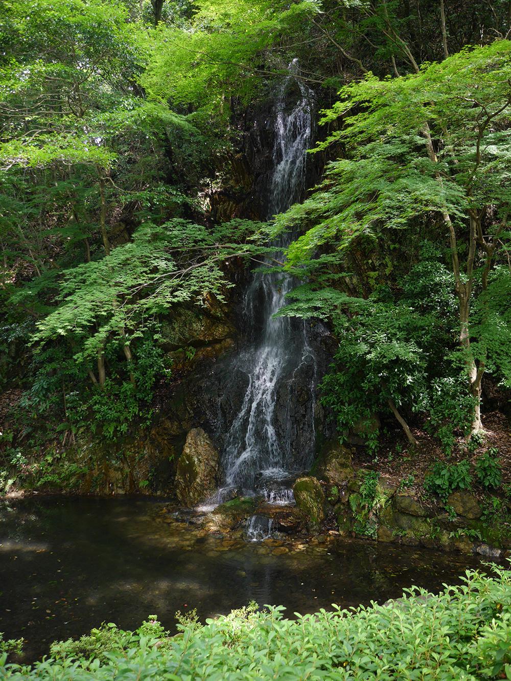 金華山 御手洗滝