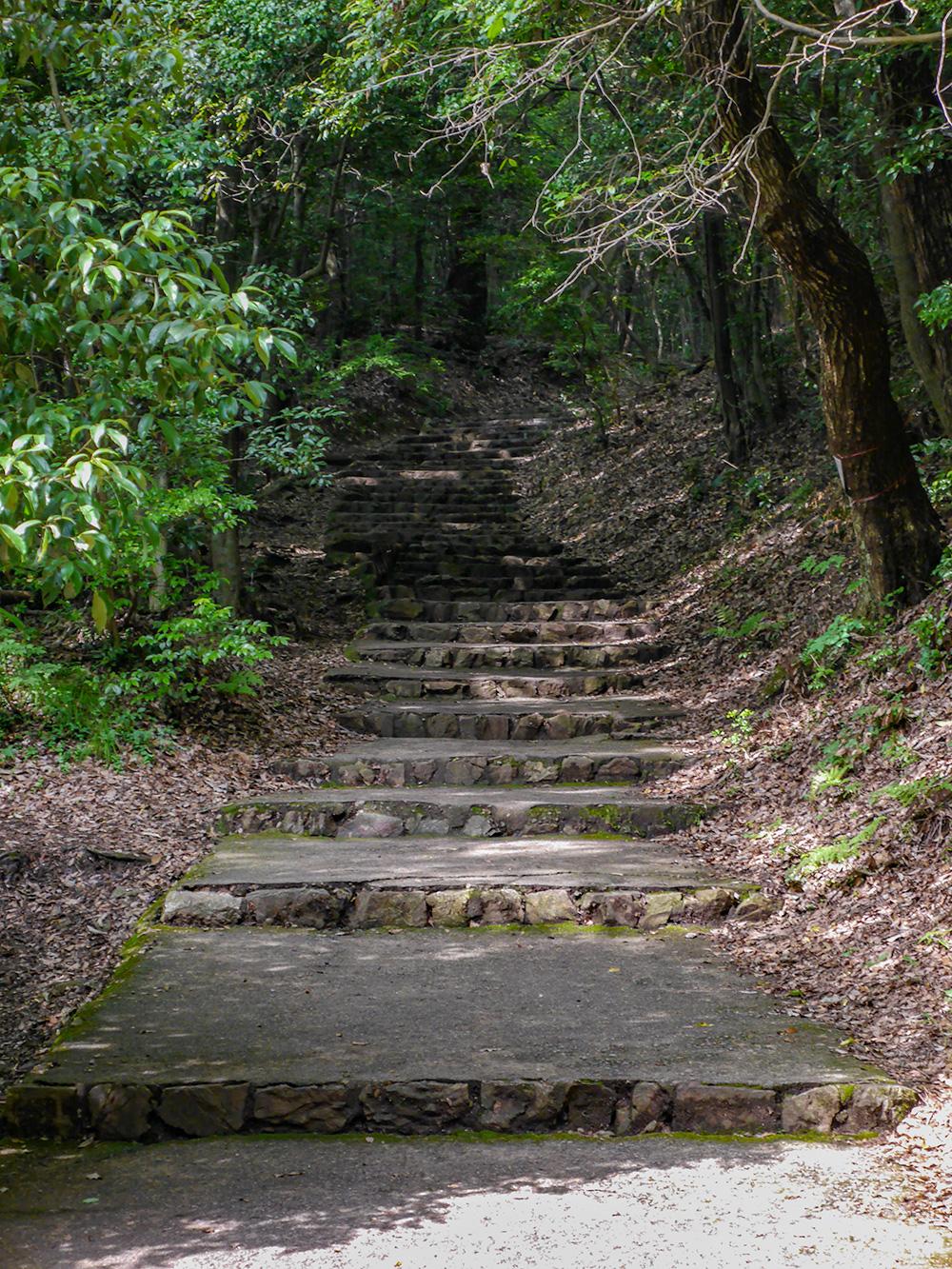 金華山 登山道 石段