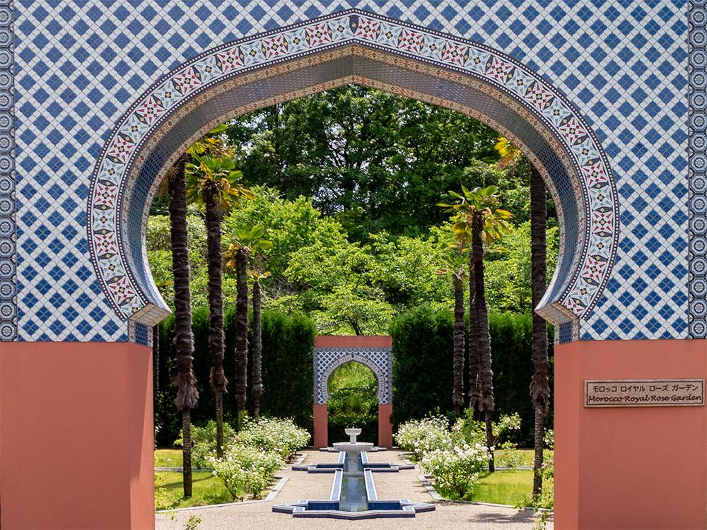 花フェスタ記念公園 モロッコロイヤルローズガーデン