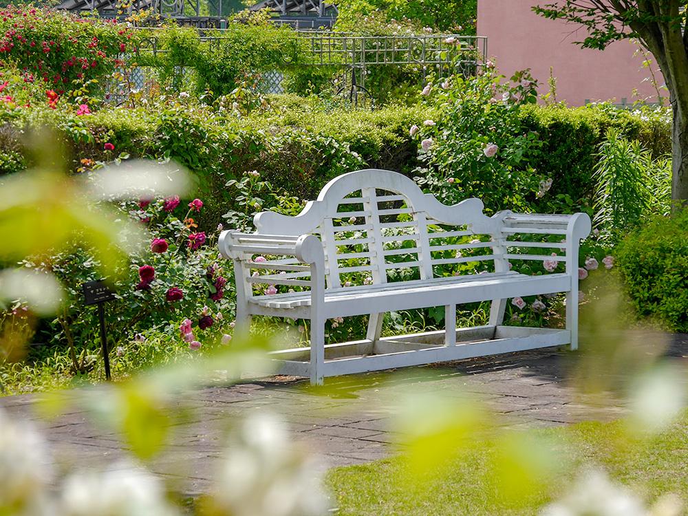 花フェスタ記念公園 庭園の白いベンチ