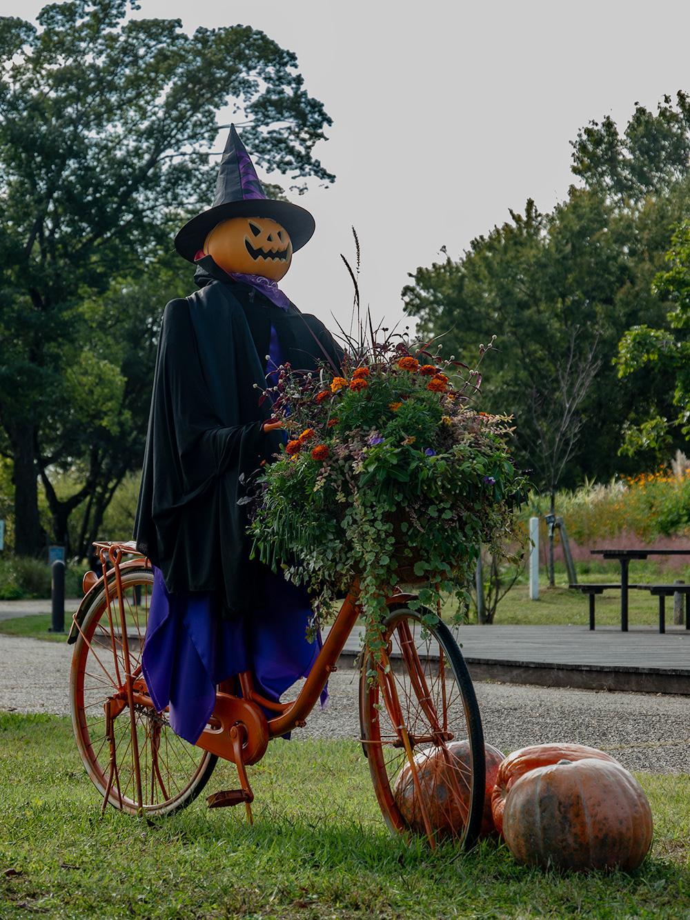 フラワーパーク江南 ハロウィンかぼちゃ