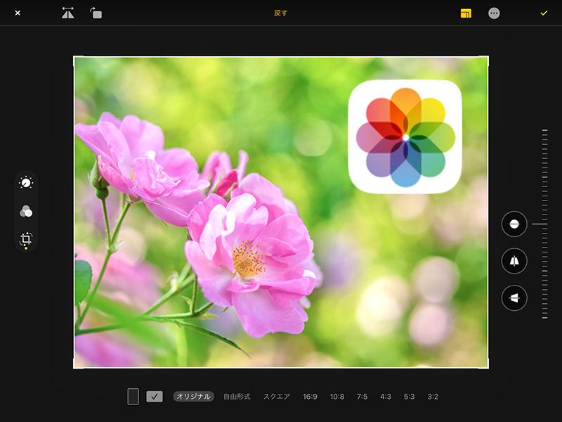無料でできる・iPadでRAW現像